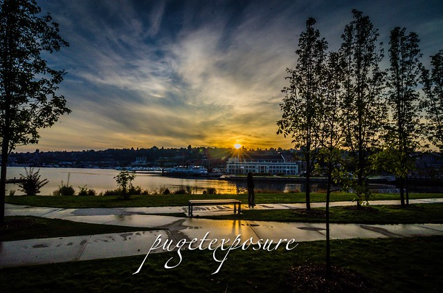 South Lake Union Park