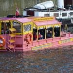 Pink Duckmarine