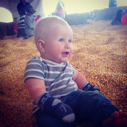 instagram corn pit louie