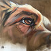 """Retriever - Eye Study"" by Aimée Rolin Hoover"