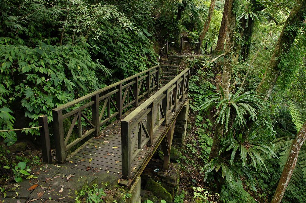 猴洞步道-29