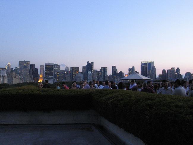 Met rooftop, NYC