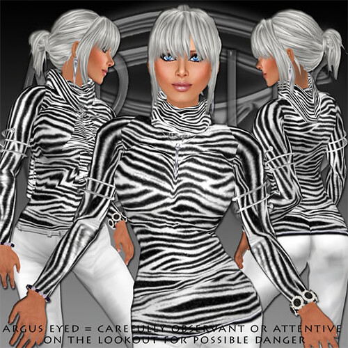 60l#129zebrasweaterpromo512 by Argus Collingwood