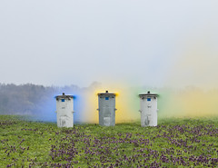 Ondrej Chmel  - Bins with blue, yellow and green smoke bombs, April