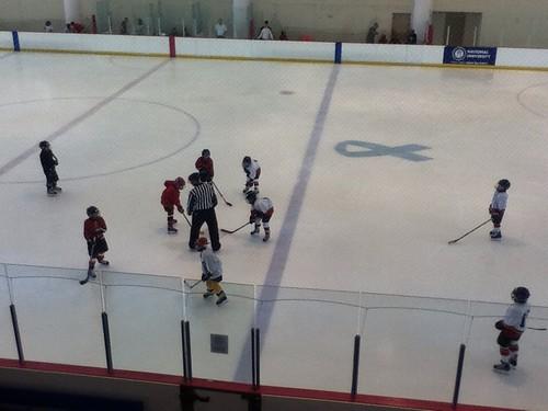 Ice Rink at Memorial City Mall