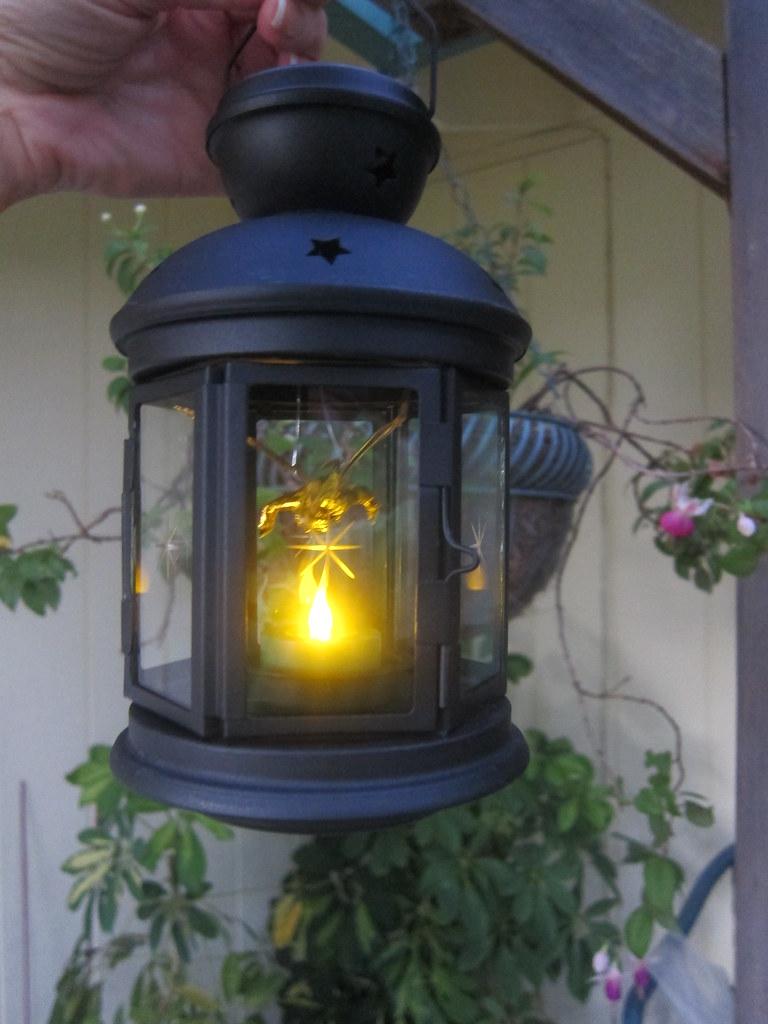 Fairy Lantern (Lit) (2)
