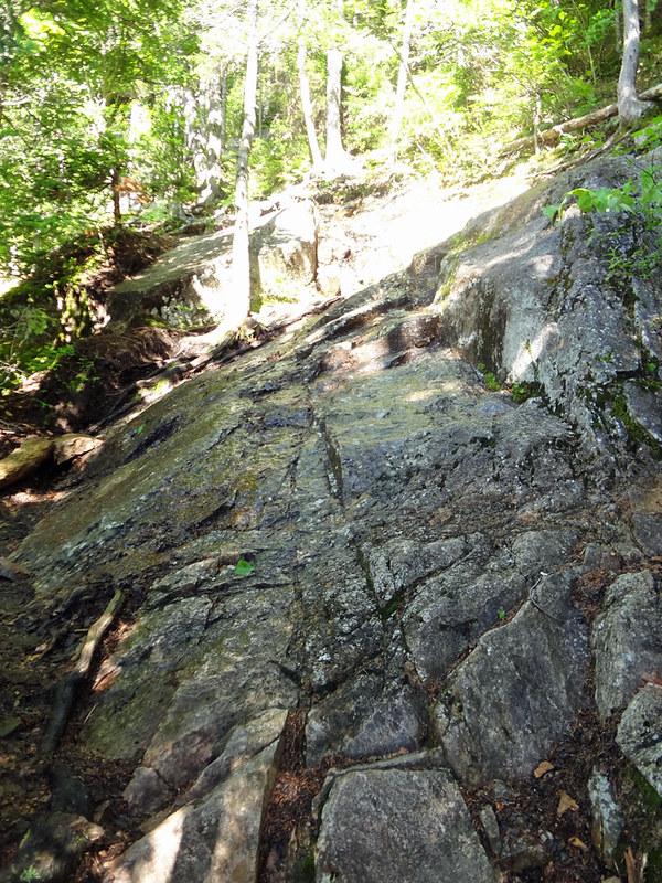 Mt. Webster Ascent