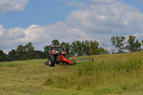 Hay cutting - Morgan County, AL