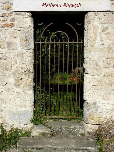 Foire de la St Mathieu Gallardon (31)