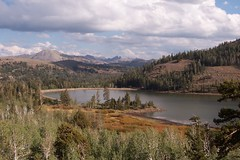 Our newly discovered treasure: El Dorado National Forest