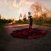 Beckoning Autumn by Kindra Nikole
