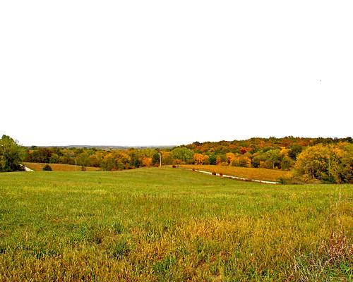 Beautiful Missouri View!