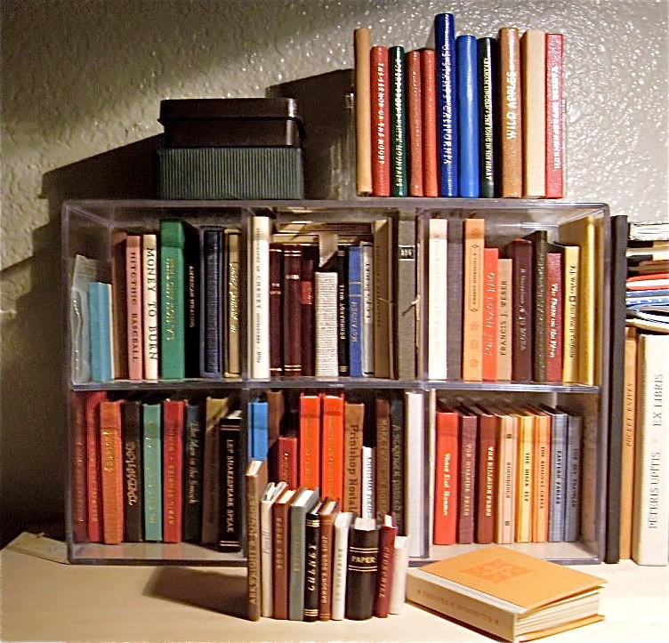 Miniature Books | If I had been smart I should have created