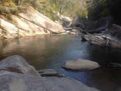Where I Swam