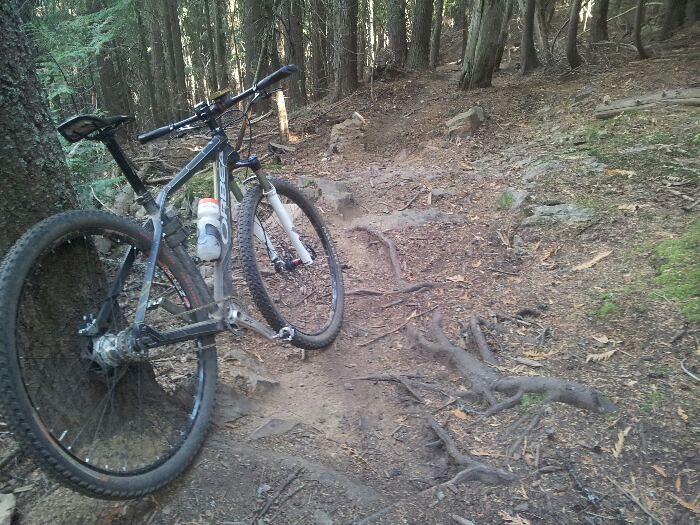 Pale Ale trail