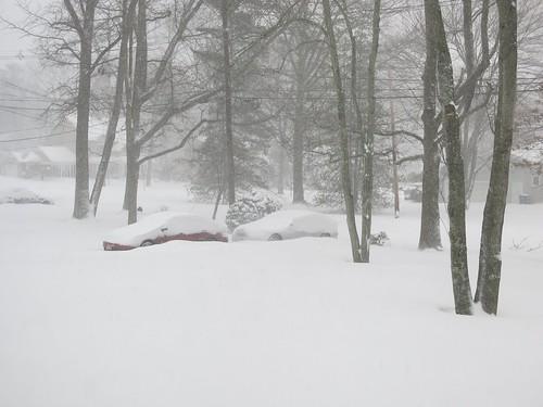 Sunday Colours - The January Snow