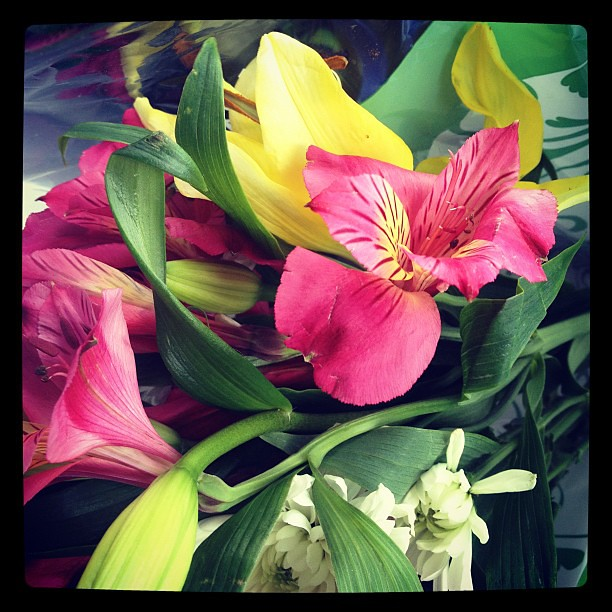 Flowers from the hubby -- just for coming back home :)
