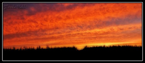 trees ireland sunset red sky orange skyline clouds skyscape fire evening soft glow fuji horizon softness silhouettes gimp august finepix glowing 2012 leitrim carrickonshannon f770 glendahall