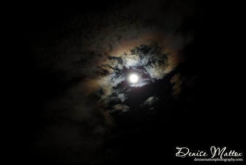 296: Blue moon