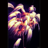 Colorful fireworks by -clicking-