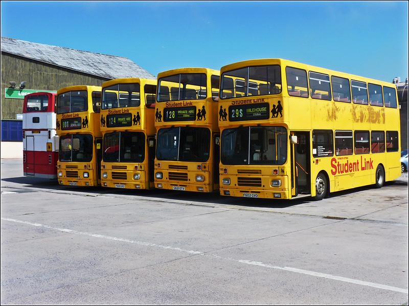 Schoolbus lineup