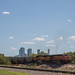 Small photo of Fort Worth
