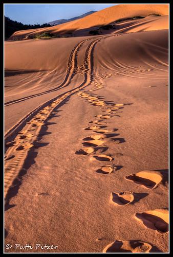 sunrise utah sand unitedstates tracks hdr kanab sanddunes coralpinksanddunes hdrlandscape