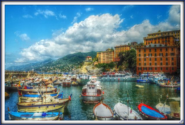 Port of Camogli (Italy)