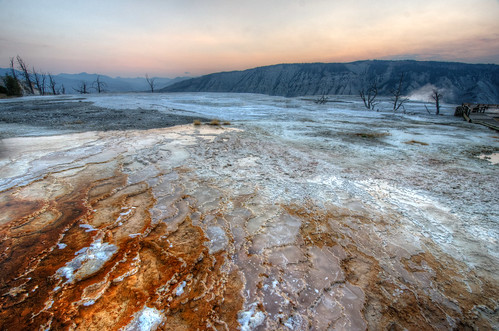 Upper Terraces of Mammoth Hot Springs at Sunrise