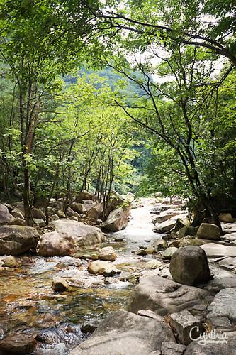 Sokcho - River 2