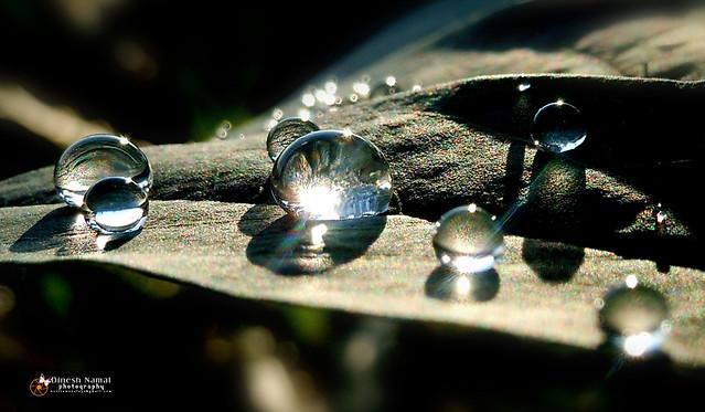 Water Drops 18
