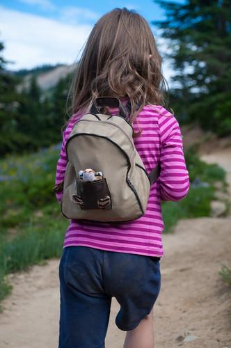 Little Hiker and Passenger