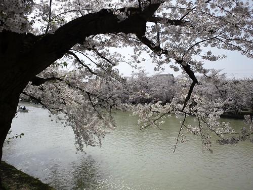 photo_0046