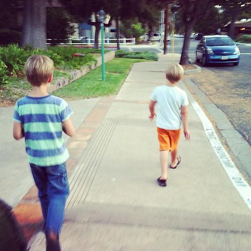 268/366 :: evening walk