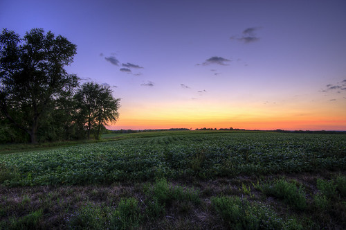 sunset sky usa tree nature field rural landscape photography glow image pentax farm sigma photograph 1020mm hdr 2012 k5 photomatix sigma1020mmf456exdc kohlbauer hardpancom marckohlbauer