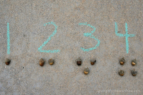 Acorn Numbers and Counters