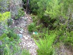 Chemin de la Montagne aux Plages : le discret départ de la sente des chasseurs (flèche verte)