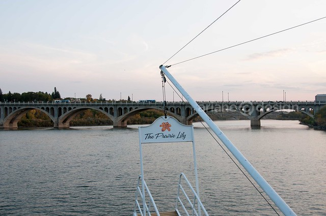 Shearwater Boat Cruise-2
