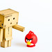 I wouldn't play with that bird, Danbo by Fairy_Nuff (piczology.com)