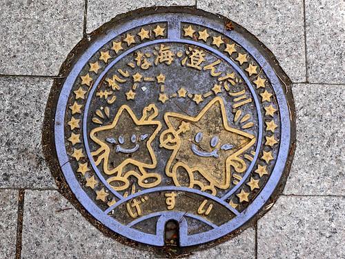 Kudamatsu Yamaguchi manhole cover 2 (山口県下松市のマンホール2)