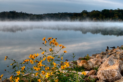 park morning flowers autumn trees light plants mist lake fall nature wet water glass floral weather fog stone clouds contrast rural sunrise reflections landscape botanical mirror rocks view earth atmosphere hills shore bloom kansas wildflowers overlook wetland shawneemission
