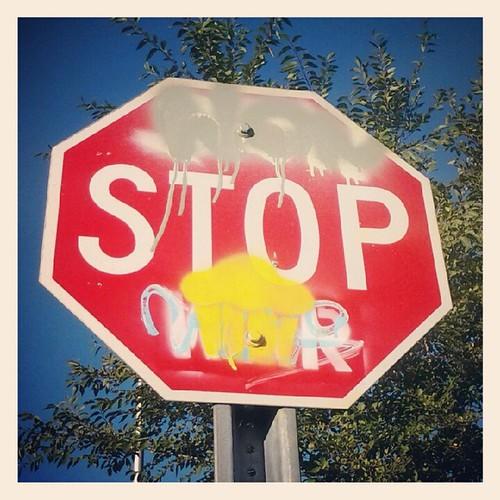 non stop cupcakes