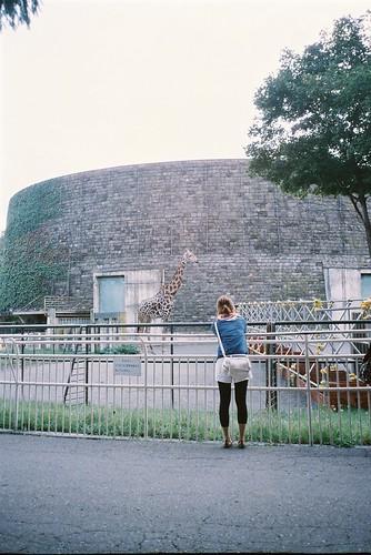 Maruyama zoo