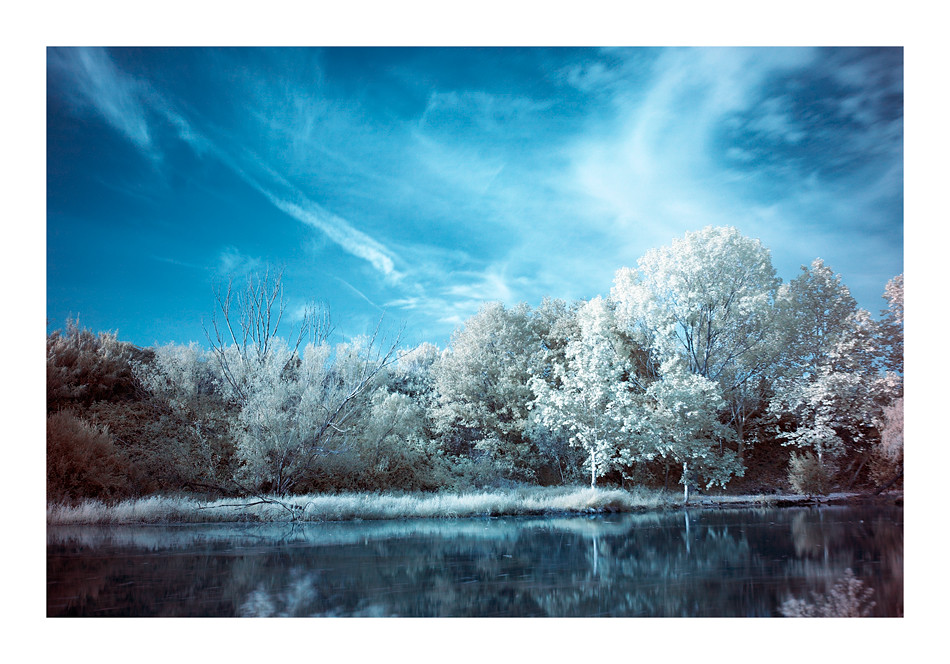 La bassa dels Ànecs IReal