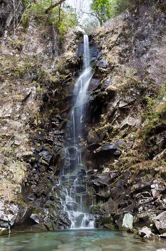 つるべ落としの滝 2012.4.7-1
