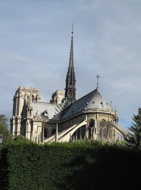 Notre Dame hedge