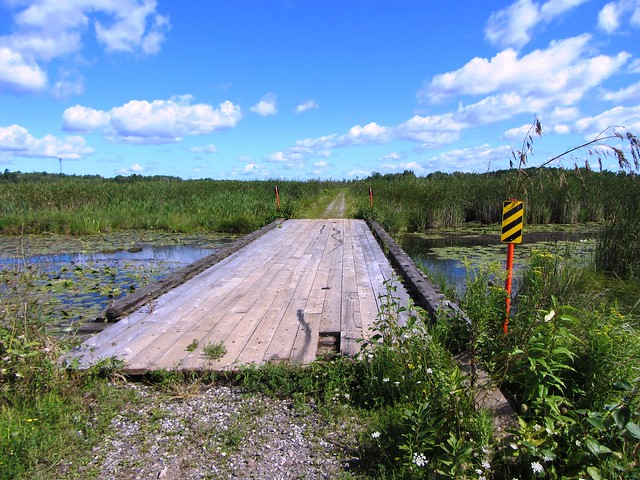 Bridge on Uxbridge-Lindsay trail in August 2012