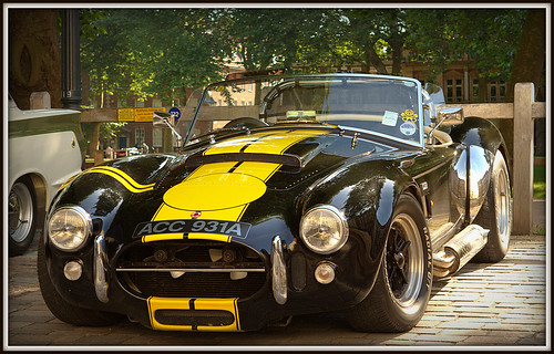 AC Cobra by Welsh Harlequin