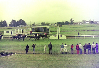Makaraka Poverty Bay Racecourse - Gisborne NZ 1975