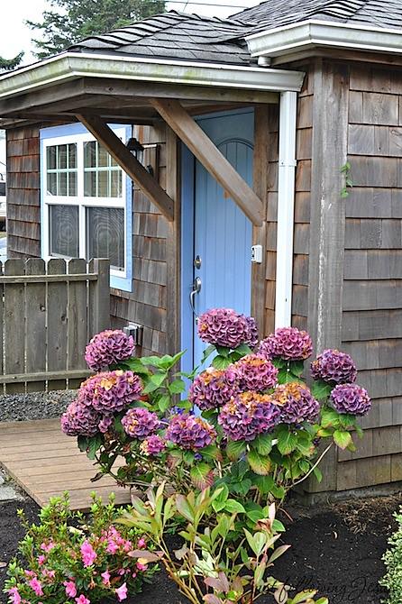 beach cottage 3.jpg
